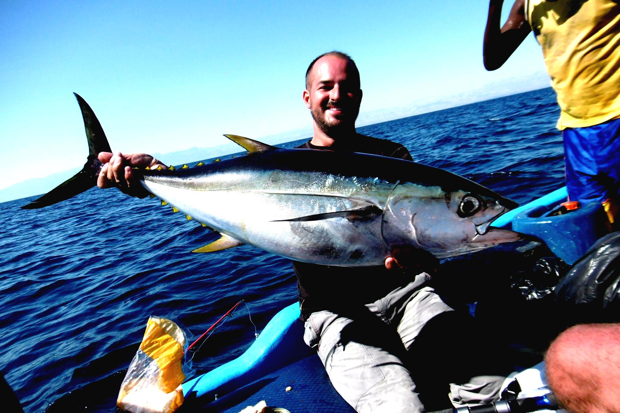 fish-yellowfin-tuna-djibouti